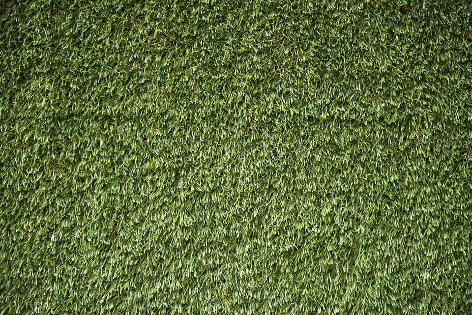 Field, Green, Grass Field, Turf