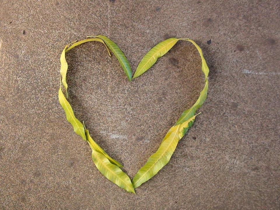 Heart, Leaves, Nature, Love, Romantic, Pattern, Green
