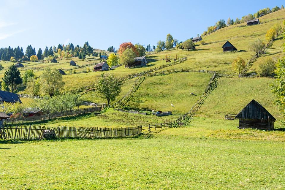 Landscape, Countryside, Nature, Grass, Field, Green