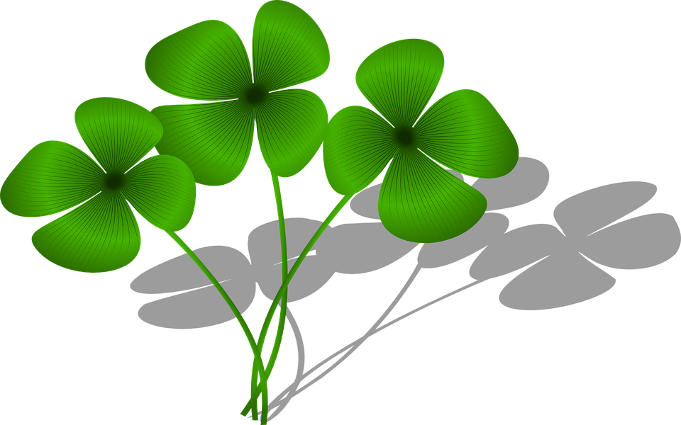 Clovers, Luck, Flora, Green, Plant, Symbol
