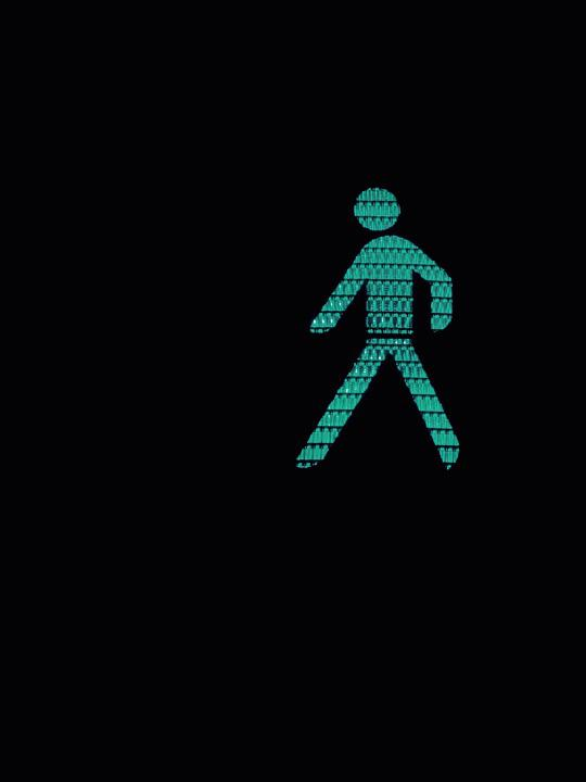 Males, Immediately, Green, Traffic Lights