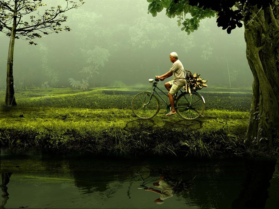 Man, Old, Bike, Nature, Green
