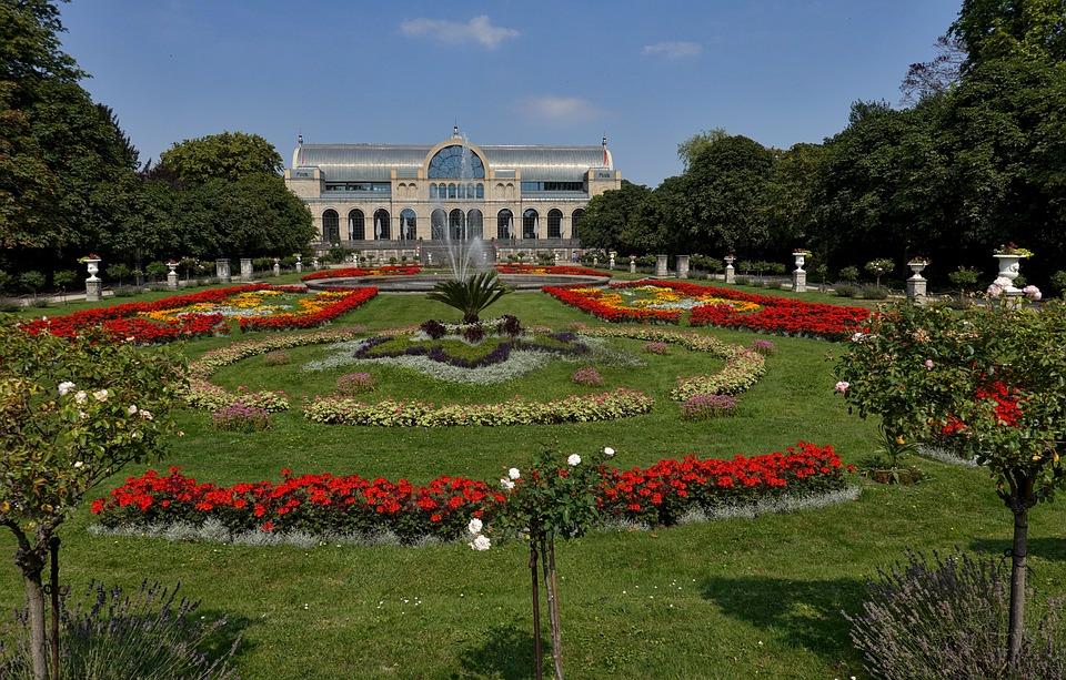 Cologne, Flora, Nature, Plant, Green, Park, Spring