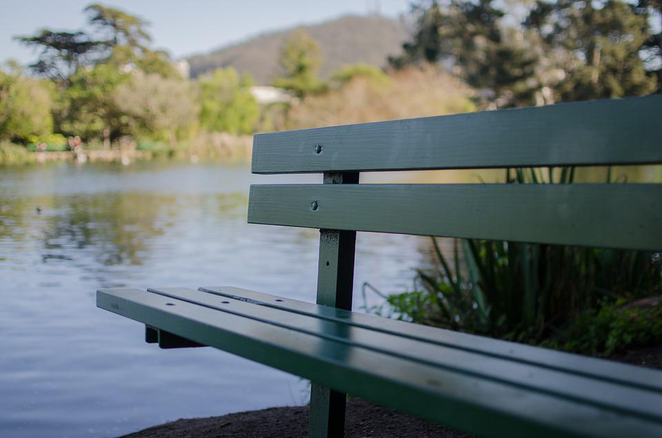 Nature, River, Green, Bench, Outdoor, Lake