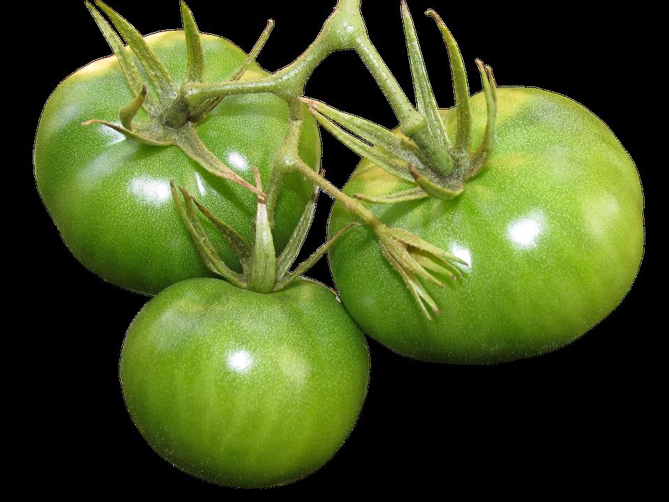 Tomatoes, Green, Food, Vegetables, Organic