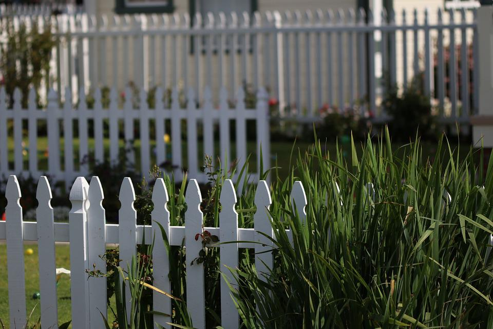 White Picket Fence, Yard, Outdoor, Green, Design, White
