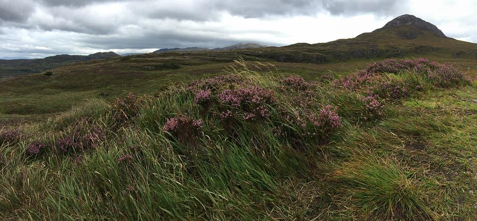 Ireland, Panorama, Nature, Atmospheric, Irish, Green