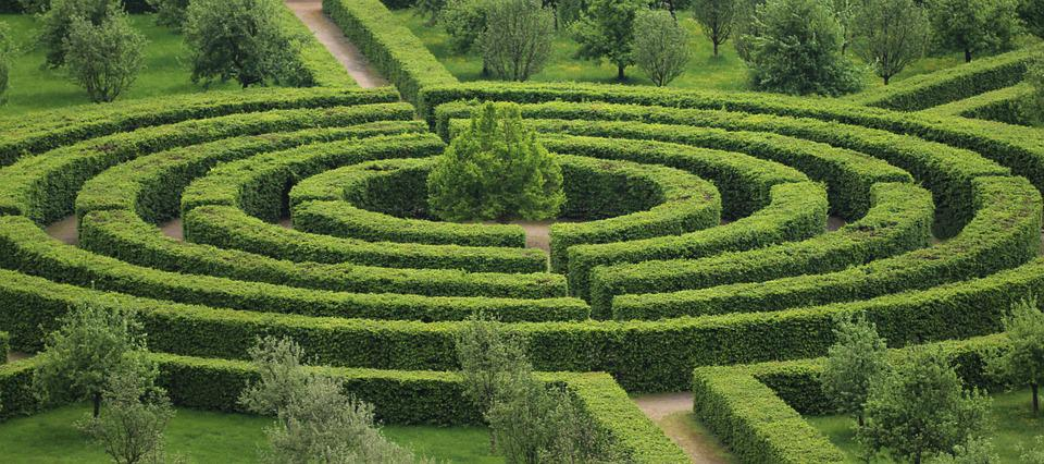 Park, Maze, Green