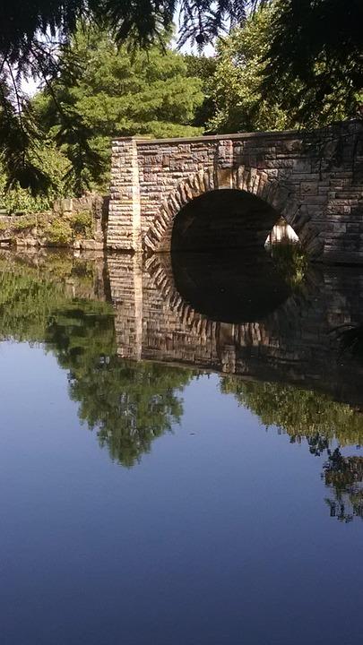 Bridge, Park, Reflections, Summer, Spring, Green