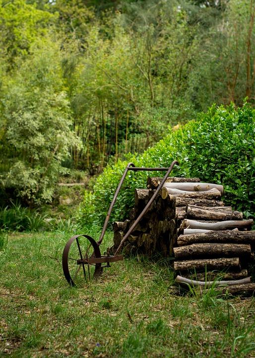 Garden, Summer, Vintage, Nature, Spring, Natural, Green