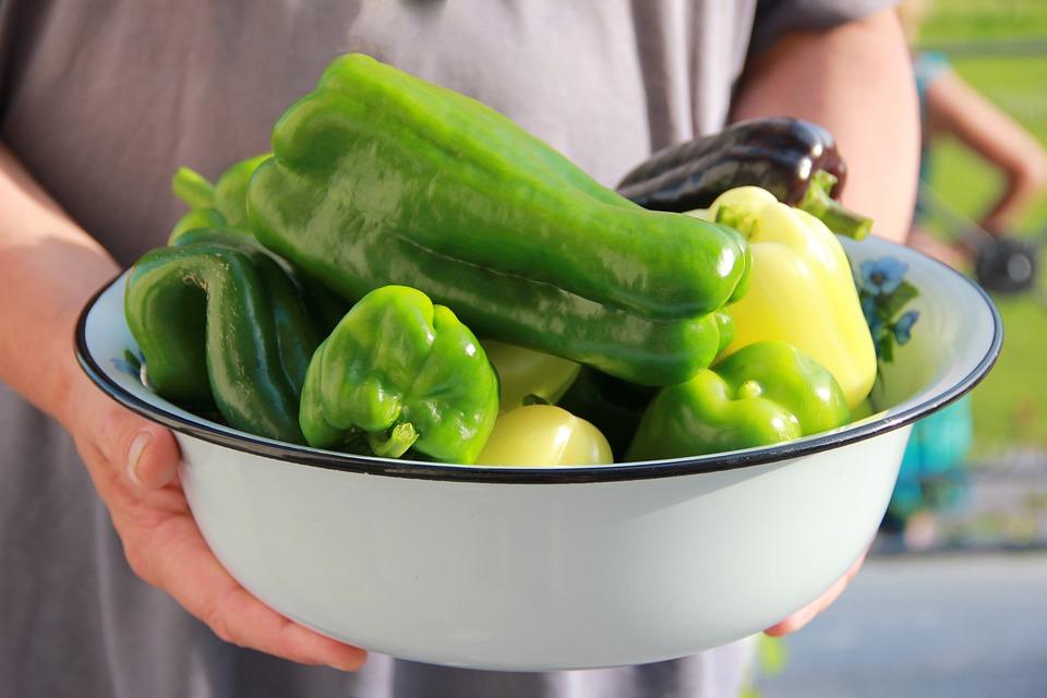 Pepper, Green, Summer, Nutrition, Vegetables, Salad