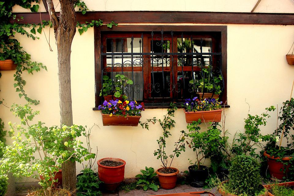 Home, Window, Wood, Green, Turkey