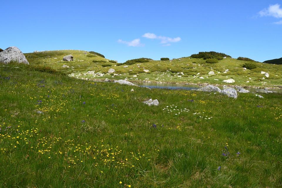 Valley, Green, Grass, Sky, Spring, Nature, Outdoor