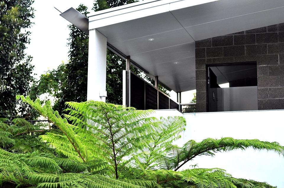 Angles, Plant, Green, White, Sky, Grey, Glass, Path