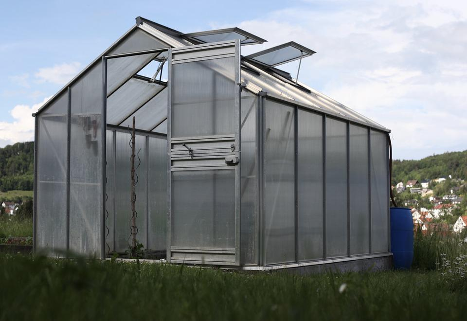Garden Shed, Greenhouse, Vegetables, Country Life