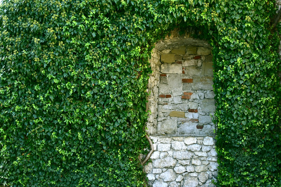 Green, Greenwall, Castle, Decoration, Vintage