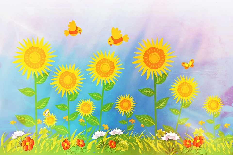 Sunflower, Collage, Summer, Flowers, Greeting Card