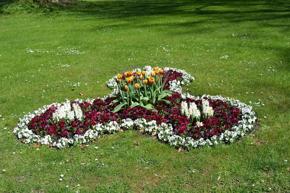 Flower, Greizer Park, Thuringia Germany
