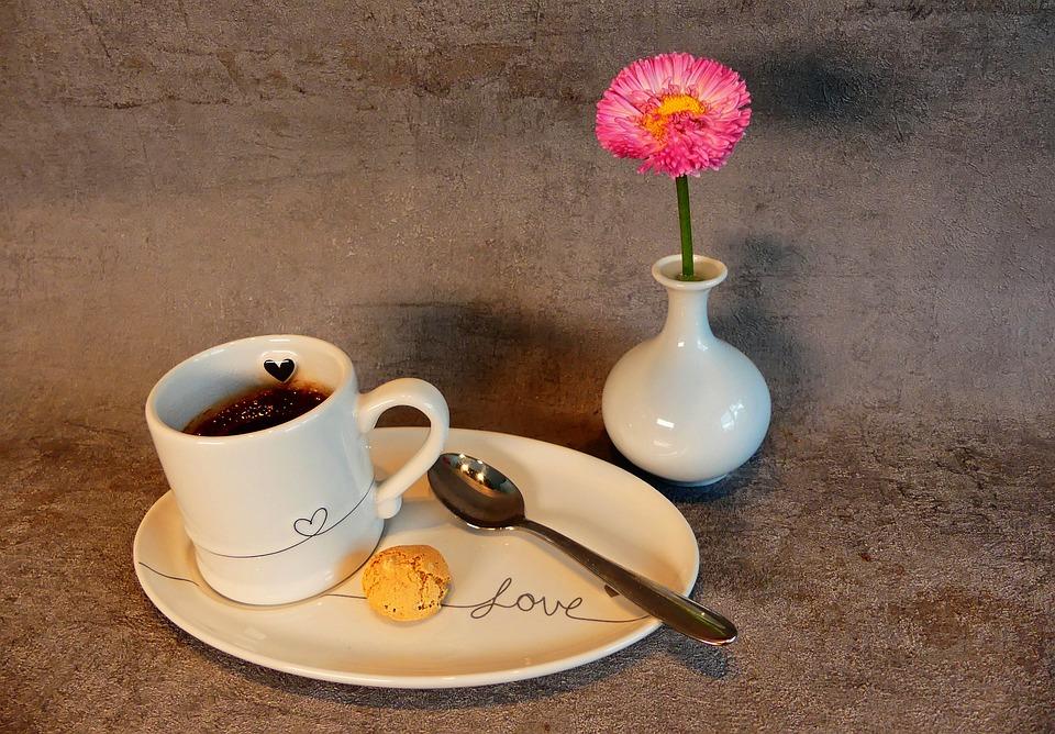 Espresso, Grey, Pink, Concrete, Daisies, Food