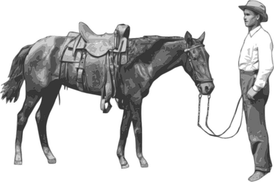 Cowboy, Horse, Gray, Grey, Man