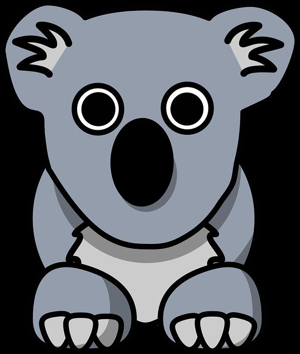 Koala, Animal, Cute, Grey, Bear, Australia