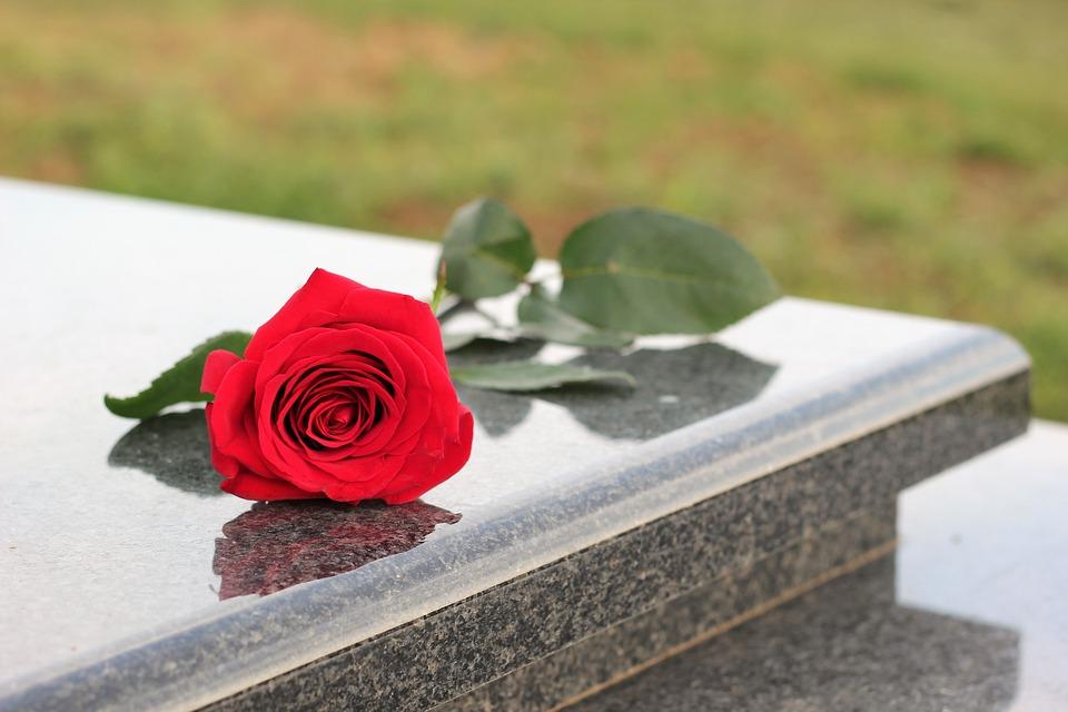 Red Rose, Grey Marble, Grave, Graveyard