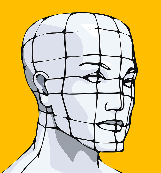 Head, Face, Grid, Human Mapping, Skull, Science