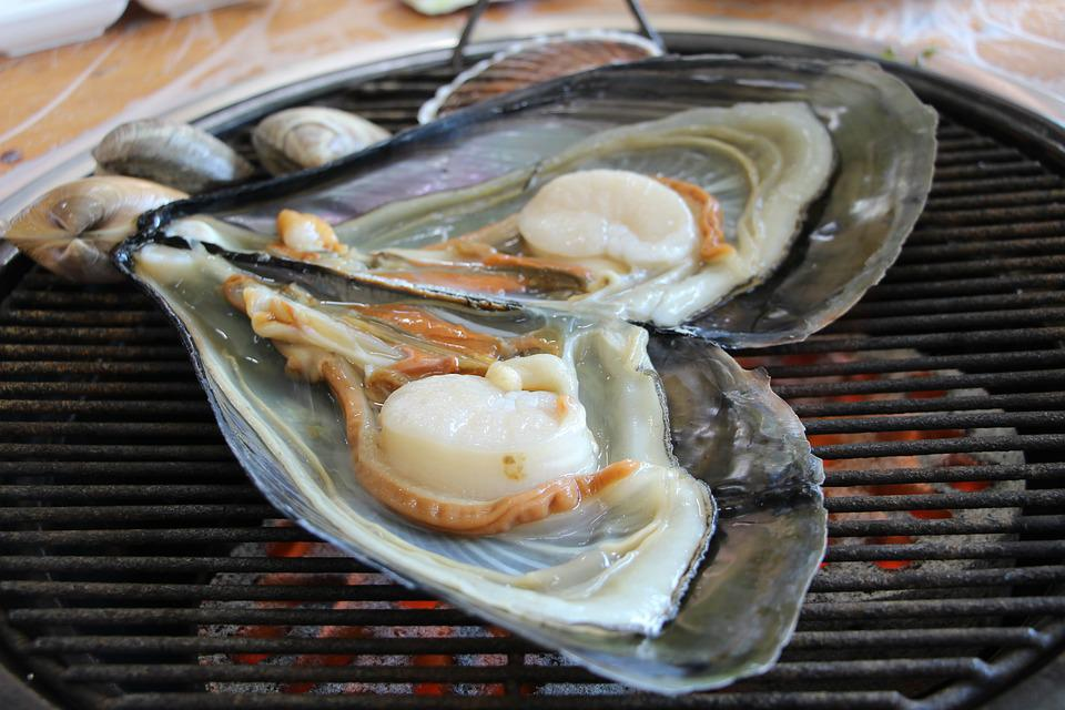 Clam, Grilled Shellfish, Seafood, Grilled, Cooking