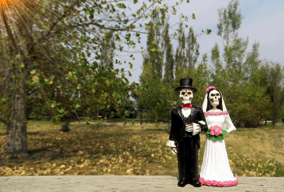 Free photo Groom Wedding Skeleton Bride Love Couple Woman Max Pixel