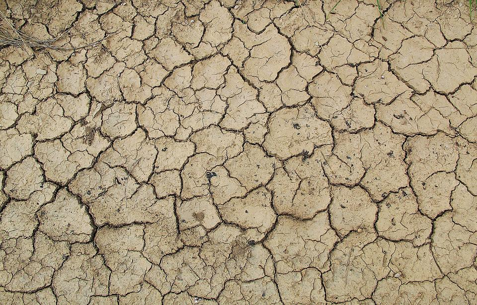 Ground, Earth, Dehydrated, Drought, Dry Soil, Cracks