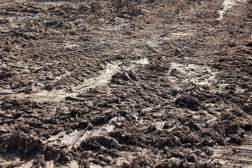 Mud, Land, Ground, Brown, Track, Tractor, Dirt, Farm
