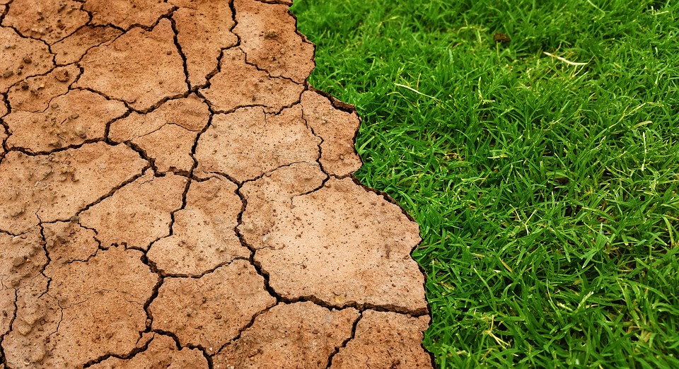 Global, Warming, Climate, Change, Soil, Drought, Ground