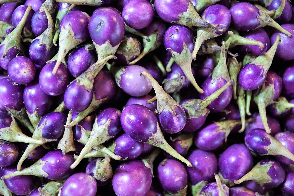 Makuea Muang, Nature, Food, Grow, Summer, Plant