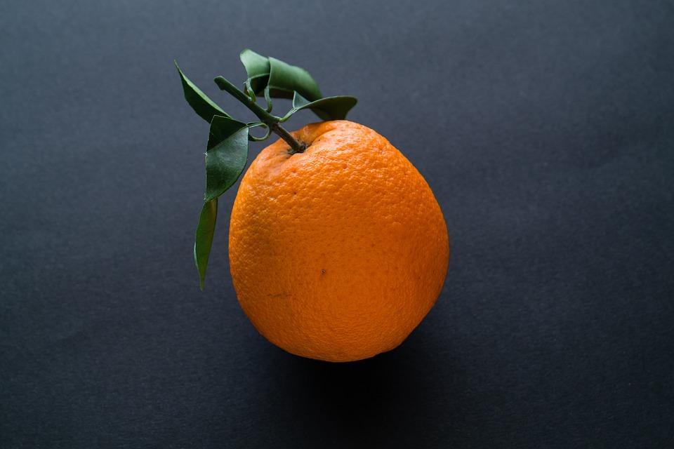 Fruit, Food, Grow, Orange, Growing, Fresh, Natural