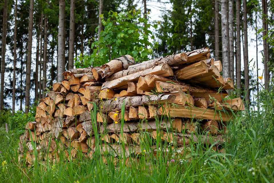 Holzstapel, Wood, Energy, Firewood, Growing Stock