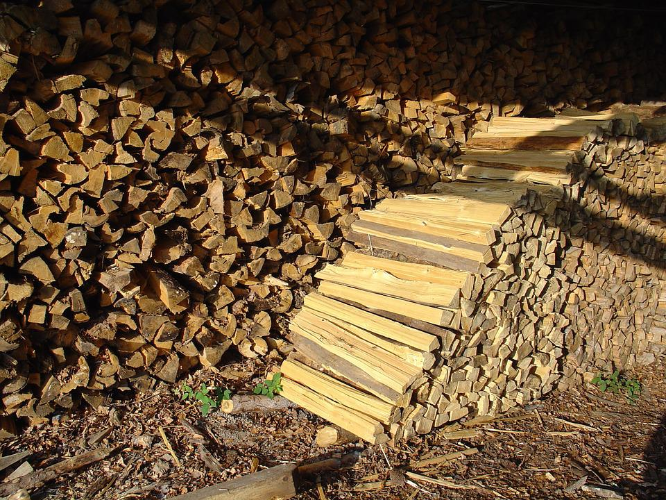 Firewood, Wood, Holzstapel, Growing Stock, Log