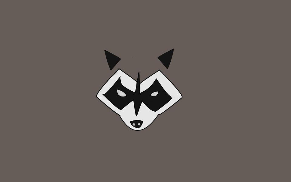 Raccoon, Rocket Raccoon, Guardians Of The Galaxy