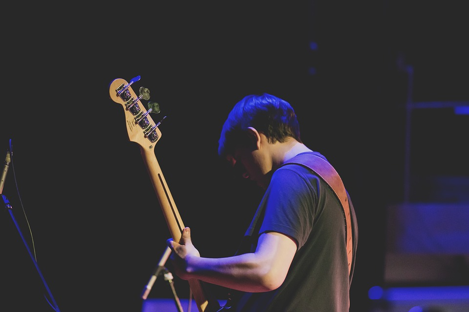 People, Bass, Concert, Electric, Guitar, Guitarist