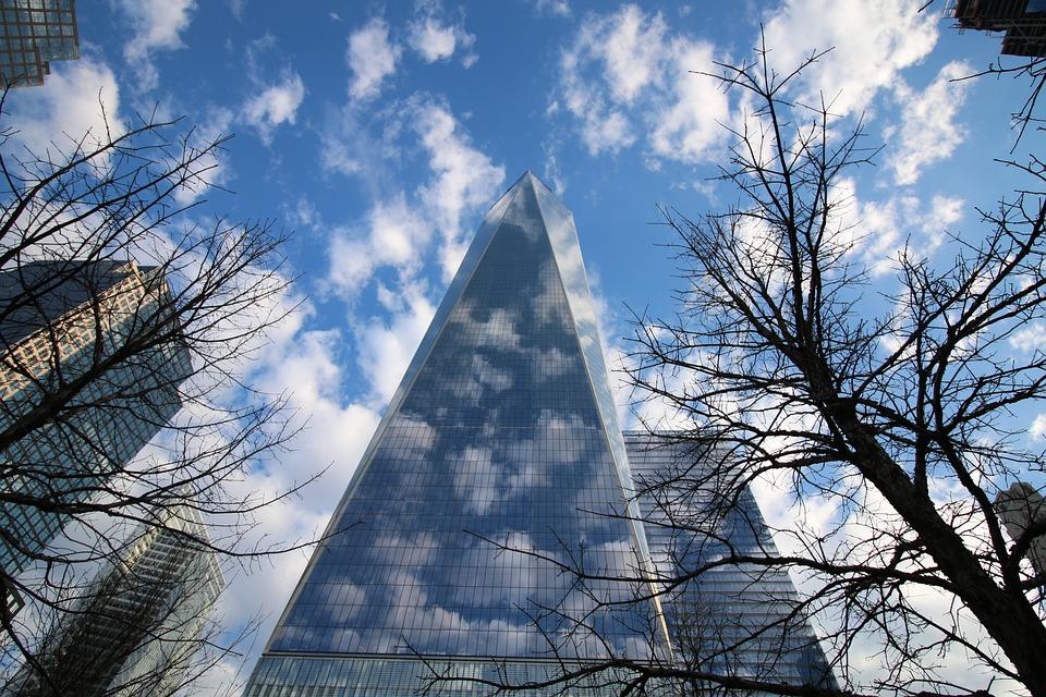 Seagull, One World Centre, Manhattan, Skyscraper, Gull