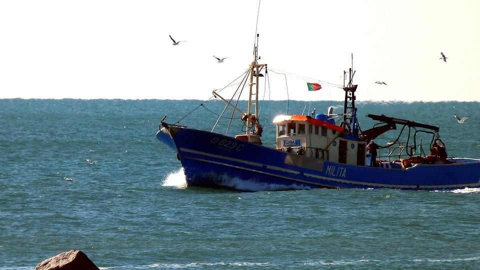 Fishing Boat, Algarve, Gulls, Sea