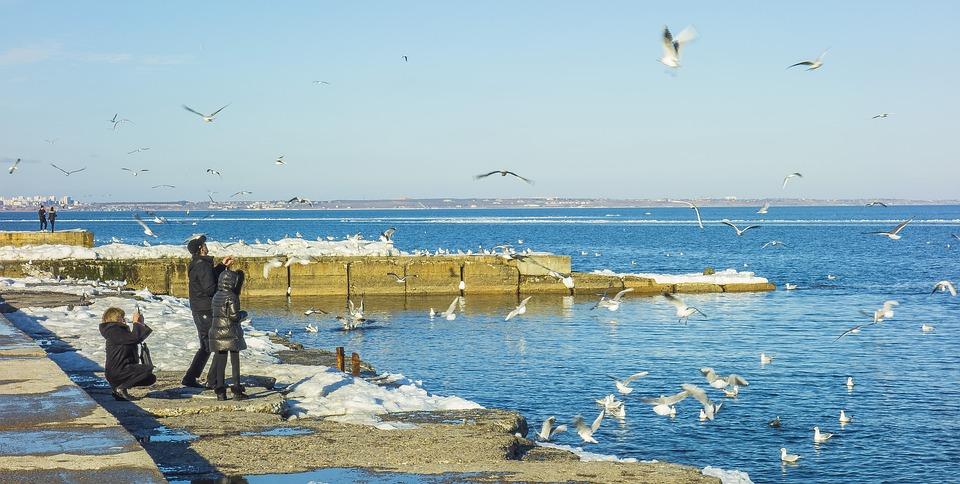 Odessa, Langeron, People, Gulls