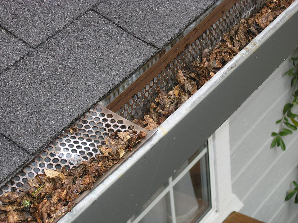 Gutter Guard Ipswich, Gutter Protection Ipswich