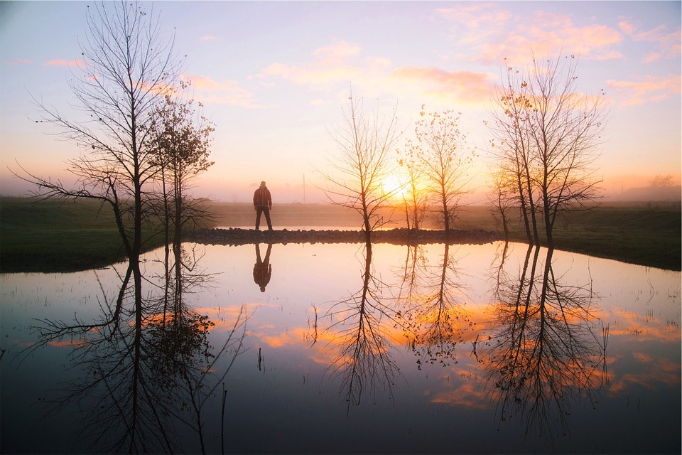 Sunset, Water, Reflection, Trees, Pond, Guy, Man