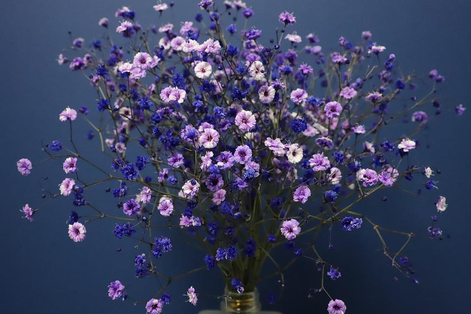 Gypsophila, Flowers, Bouquet, Atmosphere, Vase