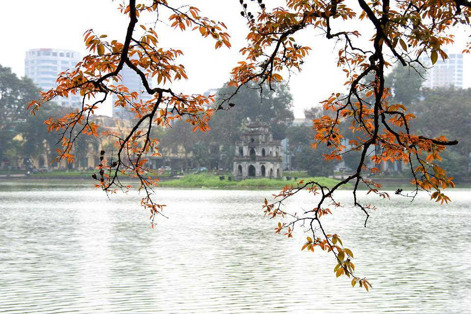 Ha Noi, City, Vietnam, Lake, Red Leaves