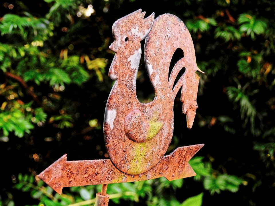 Weather Vane, Hahn, Iron, Stainless, Wind Direction