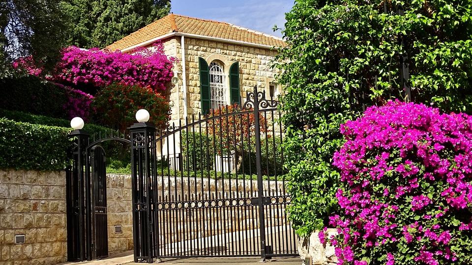 Israel, Haifa, Building, Flowers