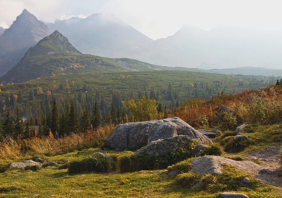 Poland, Tatry, The High Tatras, Hala Gąsienicowa