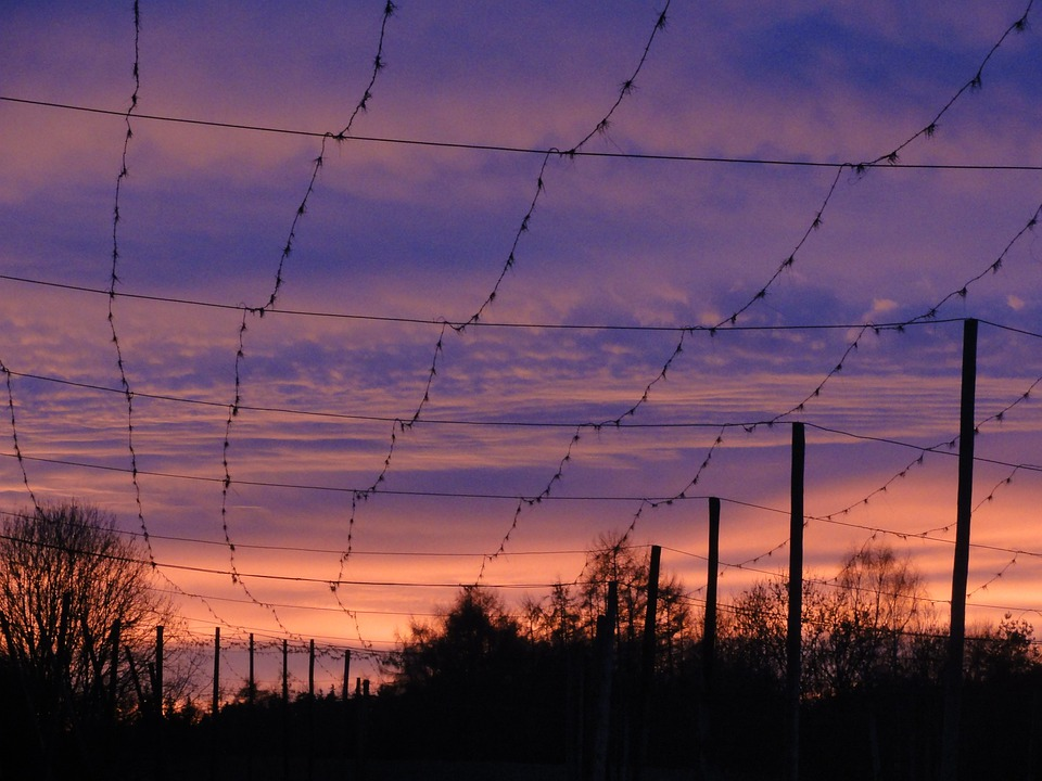Sunset, Evening Sky, Hallertau