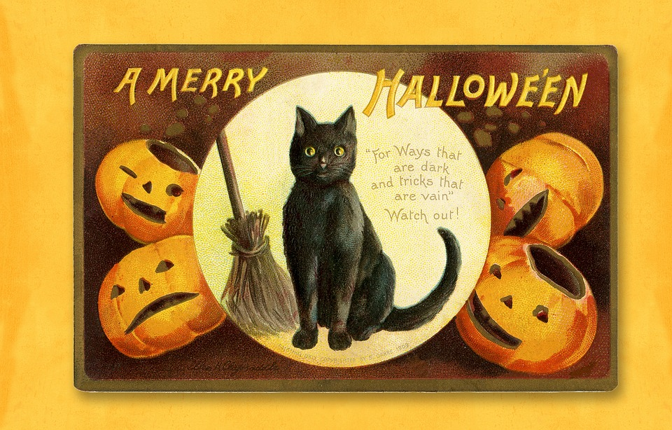 Halloween, Vintage, Card, Halloween Card, Cat, Black